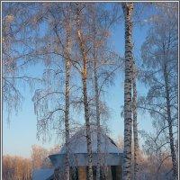 Зима, красота... :: Ольга Гавриленко
