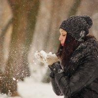 Snow :: Ольга Перепелица