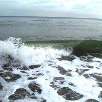 Январская волна :: AV Odessa