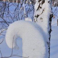 Зимние причуды :: Николай Мальцев