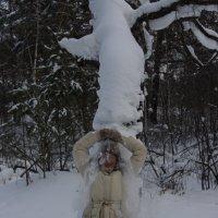 снежный душ :: Светлана Володина