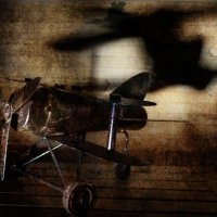 Под крылом самолета.... :: Ирина Елагина