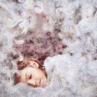 Зимний сон :: Елена Защитина