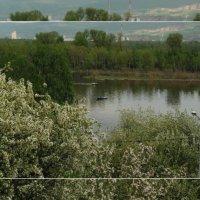 Озеро в Сибири :: Альбина Авдеева