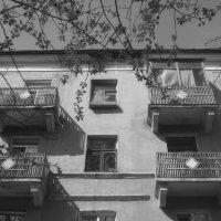 четыре балкона :: Зоя Яковлева