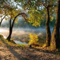 Дмитрий Балховитин - Нежный утренний свет