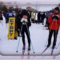 соревнования по лыжам :: Оля Сердюкова
