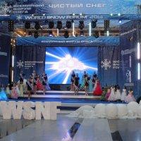 Конкурс Мисс снежная вселенная :: Наталья Золотых-Сибирская
