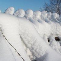 Морозово войско :: Риф Сыртланов