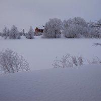 белым снегом... :: Виктория Колпакова