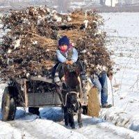 Zima v kishlake :: Голибжон Давлатов