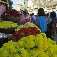 Цветы на праздник.... :: Natiko Kim