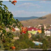 Коктебель, вид из окна. :: Олег Каплун