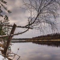 Река в ожидании. :: Анатолий Бахтин