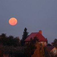 Утро с красной луной :: Светлана Карнаух
