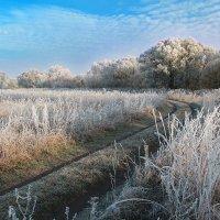Утренний заморозок :: Эркин Ташматов