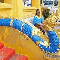 Лаос. Вьентьян. Попадание в цвет :: Владимир Шибинский