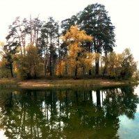 Осень в Лебяжье :: Юлия Шабалдина