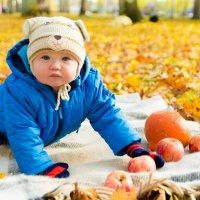 осенний малыш. :: Инта
