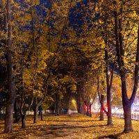 Осенняя ночь в Чернигове :: Александр Крупский