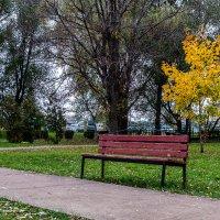 Осенние зарисовки 9 :: Sergey Kuznetsov