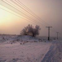 Туман :: Евгений Спирин