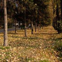 Осень... :: Rafael