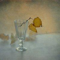 Осень :: Natali-C C