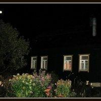 Ночной сад :: Михаил Малец