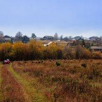 Осень на Вологодчине... :: Федор Кованский