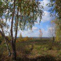 Осень, снова осень... :: Ирина Голубева