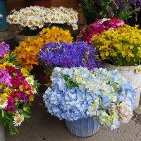 Букетов разные цветы :: Наталья Джикидзе (Берёзина)