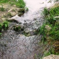 Течёт ручей,бежит ручей... :: Самохвалова Зинаида