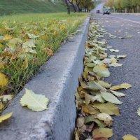 Осень на дорогах :: Lena Suhanova
