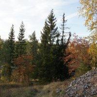 Осень в горном парке Рускеала :: Елена Смолова