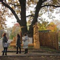 У Лукоморья дуб зеленый... :: Галина
