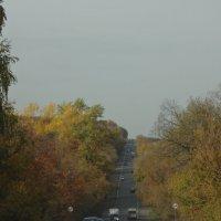 Дорога в гору :: Анастасия Вышемирская