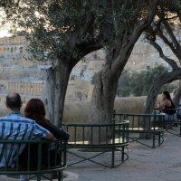 На Мальте :: anna borisova