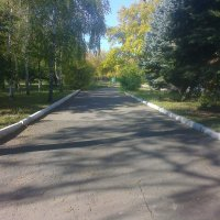 дорожка :: Valeriya Voice