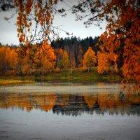 Озеро Плесцы :: Натали V