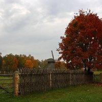 Красная oсень :: AstaA