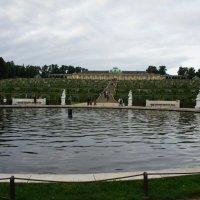 Чаша фонтана с мраморными статуями и виноградные террасы на фоне дворца Сан-Суси :: Елена Смолова