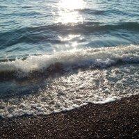 Морская волна :: Михаил Ситчихин