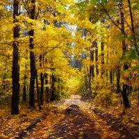Осень :: Мария Богуславская