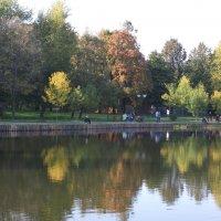 Осенний пруд :: Арина