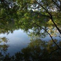 Осенние отражения :: Арина