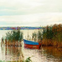 Лодка :: Olga Korableva