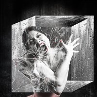 madness :: dex66
