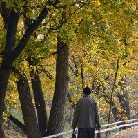 Что такое осень........ :: Kliwo