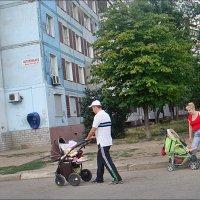 На прогулке и папы, и мамы... :: Нина Корешкова